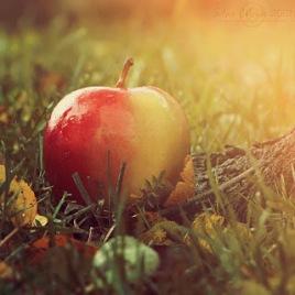 mela magica fiabe biancaneve