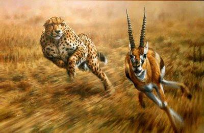 animali totem preda predatore