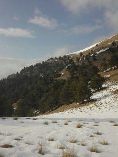 Monte Ceppo - Valle Argentina