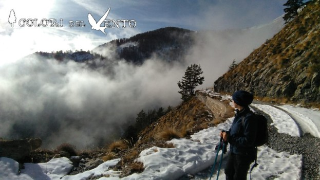 trekking neve