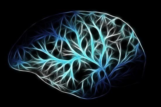 cervello mente