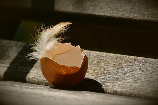 guscio uovo rinascita