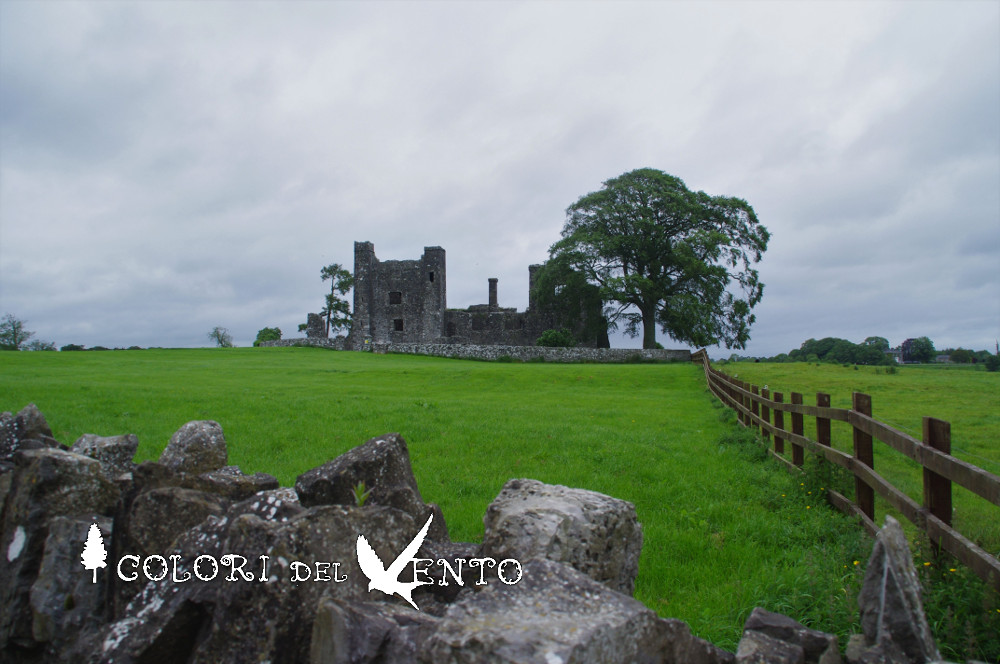Bective Abbey1