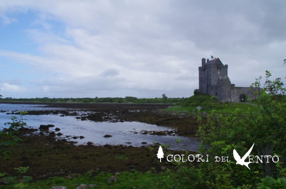 Dunguaire Castle landscapes1