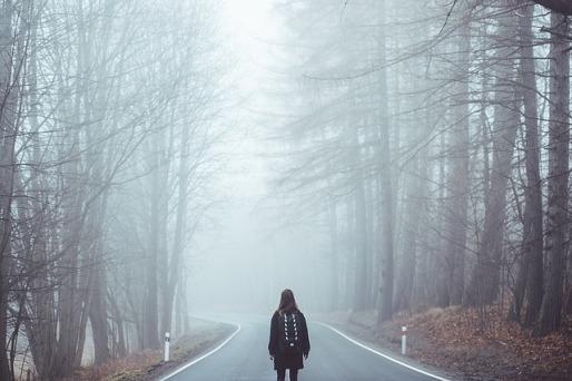 nebbia bosco