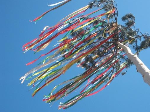 albero di maggio